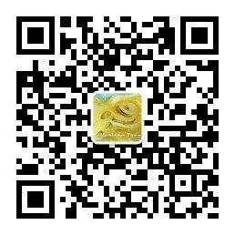 刘博士耳科在线资讯二维码.jpg